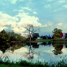 Autumn Reflections by Dawn M. Becker