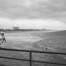Pelican Pier by John Violet