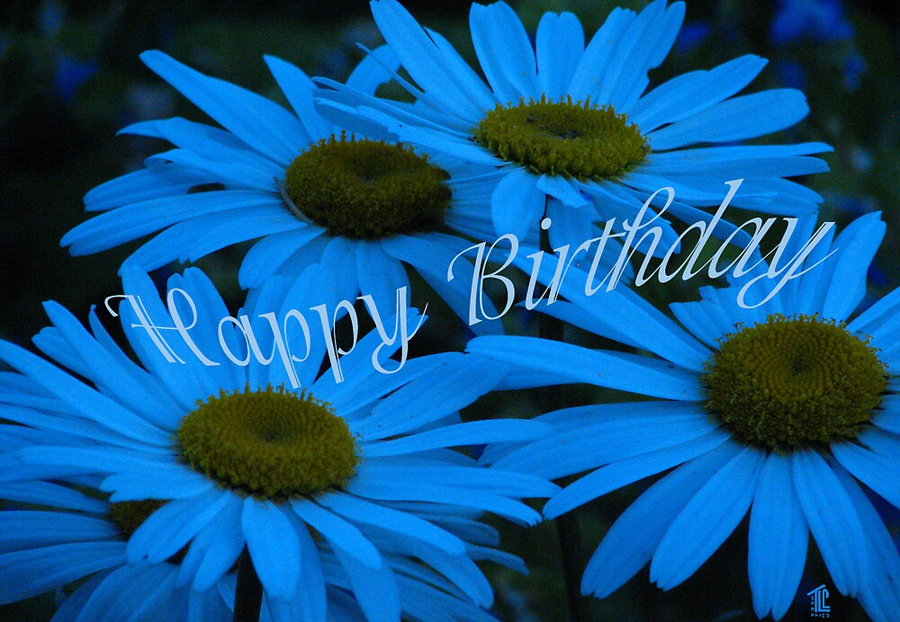 Happy Birthday Blue Daisy by TLCGraphics