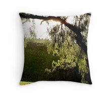 After the Storm # 3 - Audrey Wilkinson Vineyard - Hunter Valley, Australia Throw Pillow