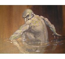 Gollum Photographic Print