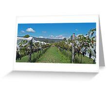 Hunter Valley Reds - Millfield, Hunter Valley Greeting Card