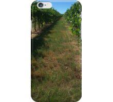 along the grape vines iPhone Case/Skin