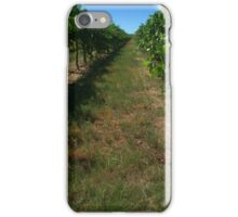 along the grape vines iPhone Case/Skin