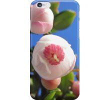 Flowers - Chilean fuchsia iPhone Case/Skin