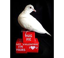 Hug Me My Valentine I'm Yours I♥U - White Dove - NZ Photographic Print