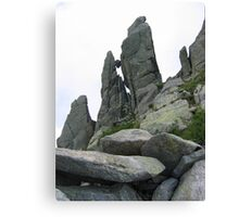 Stone between rocks Canvas Print
