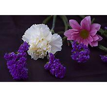Blooms Photographic Print