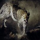 On the Prowl by Shanina Conway