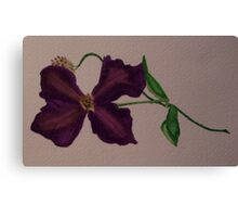 Amethyst Clematis Flower Canvas Print