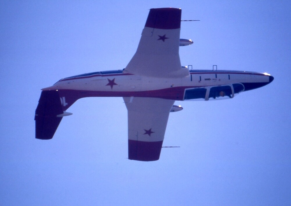 Delphin @ Port Macquarie Airshow, Australia 2002 by muz2142
