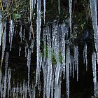 Icicles by Alison Finch