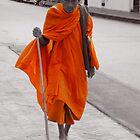 Orange monk by Ian Batterbee