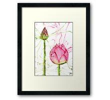 Splash Lotus and Bud Framed Print