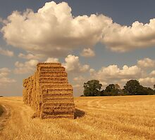 Haystacks and Clouds by elmar rubio