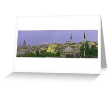 Istanbul from the Bosphorus Greeting Card