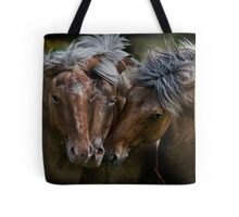Horse Lords Tote Bag