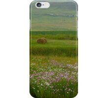 Country View, Natal, South Africa iPhone Case/Skin