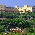 Phoenicia Hotel by Tom Gomez