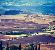 Colours of Tuscany (2010) by Andy Parker