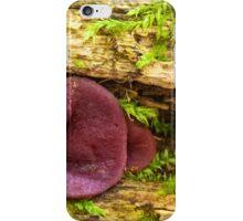 purple beauty iPhone Case/Skin