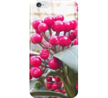 Holly berry iPhone Case/Skin