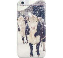 Winter Farm iPhone Case/Skin