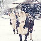 Winter Farm by Debbra Obertanec