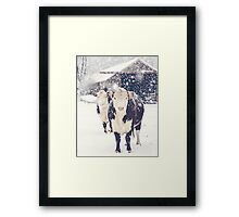 Winter Farm Framed Print