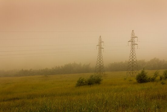 Twins in the mist... by Qnita