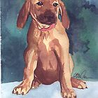 Cute Puppy watercolor by CCallahan
