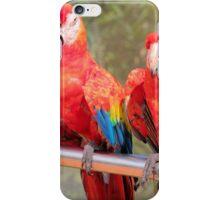 Sleeping beauties iPhone Case/Skin