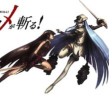 Akame vs Esdeath  by DragonSquire
