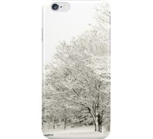 Snow Beauty iPhone Case/Skin