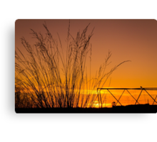 Sunset in Simplicity Canvas Print