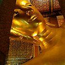 Buddha by Equinox