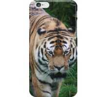 Tigers Coming iPhone Case/Skin