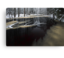Winter landscape with river Canvas Print