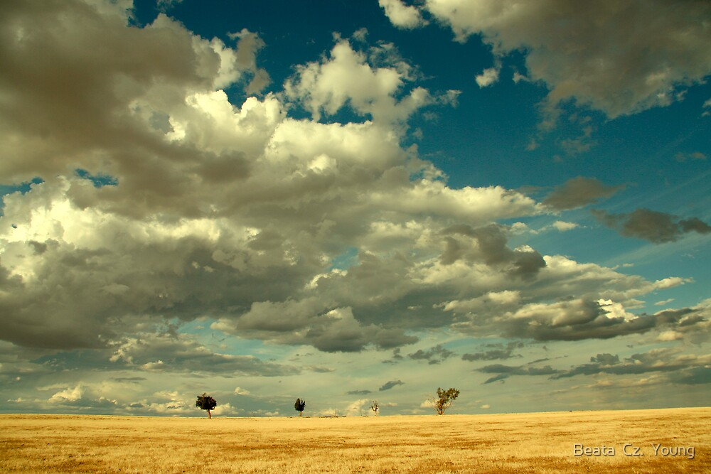 Where the Sky meets the Earth by Beata  Czyzowska Young