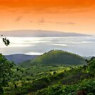 Stunning Upcountry View by djphoto
