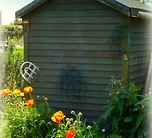 Brightening the Garden  Shed by Charmiene Maxwell-batten