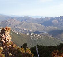 on Mt Read, Rosebery, Tasmania - love the mountains behind.....rugged by gaylene