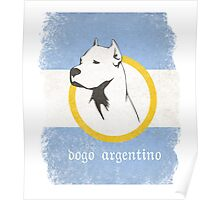 Dogo Argentino Poster