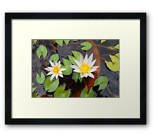 When white meets yellow Framed Print