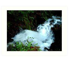 Wefer Creek Waterfall Art Print