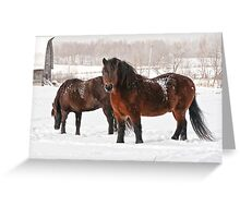 Winter Majesty Greeting Card