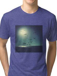 A Flock of Seagulls Tri-blend T-Shirt