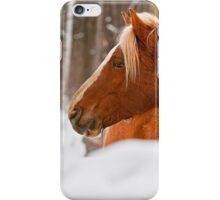 Equine Prince iPhone Case/Skin