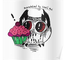 Loki - the overwhelmed by cake owl Poster