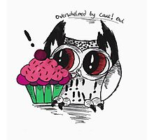 Loki - the overwhelmed by cake owl Photographic Print